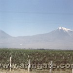 Mt. Ararat Picture in 1985