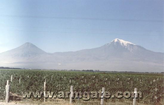 Mt. Ararat Picture in 1985